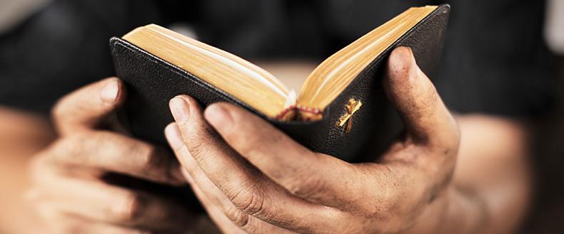 Toma tu Biblia y ábrela